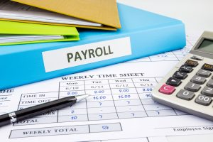 payroll management software india
